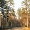 Продаётся участок ижс в ленинградской области
